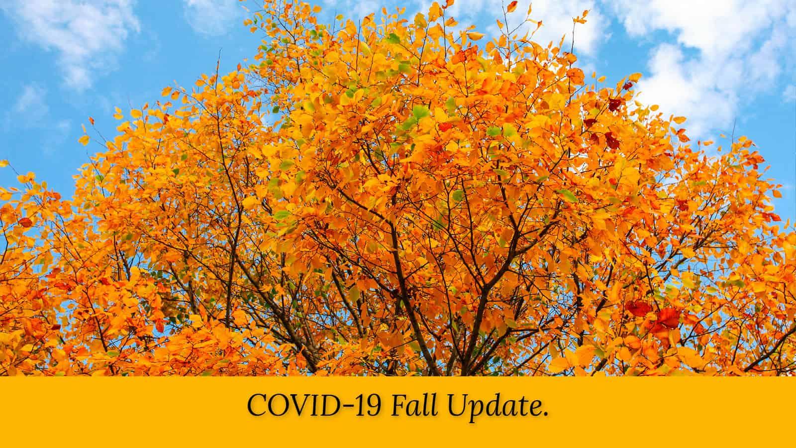 wmp-carousel-covid-19-fall-update-lora