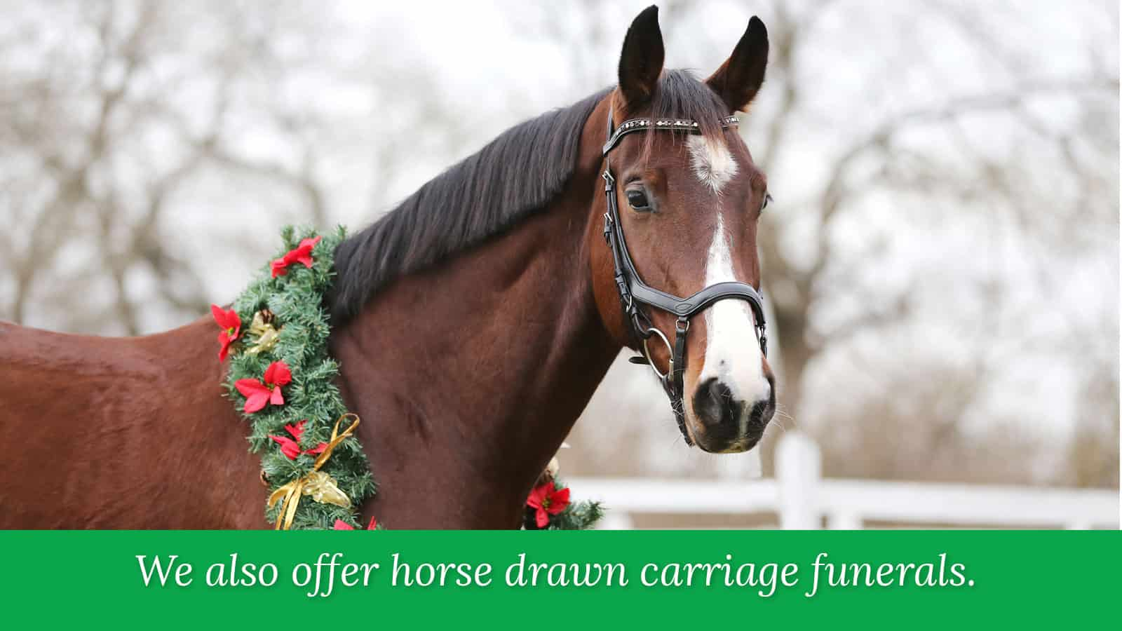 wmp-carousel-holiday-carriages