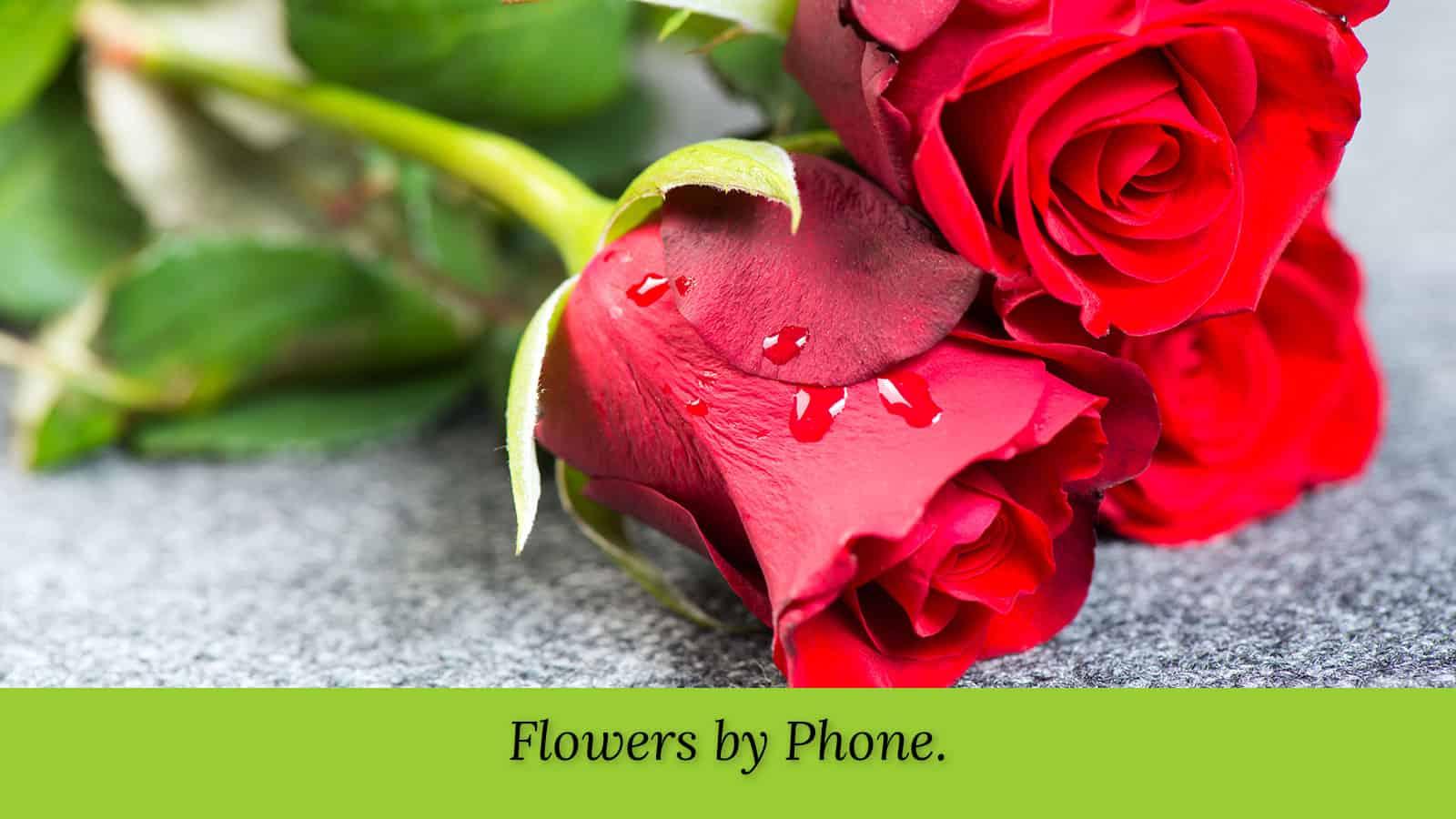 wmp-carousel-flowers-lora